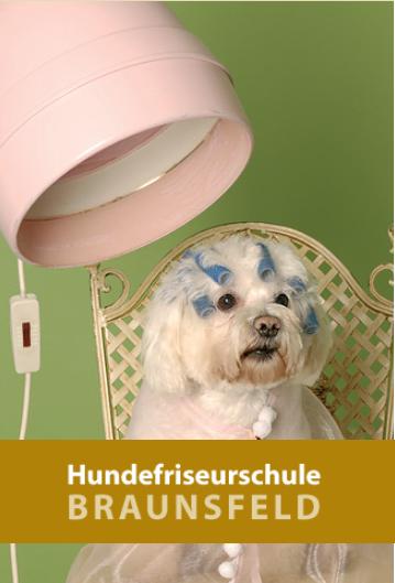Buesdorfer-Stuben